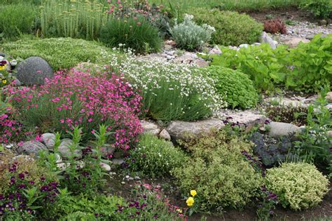 what landscaping enthusiasts should about rock garden