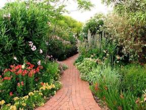 australian native garden front garden ideas pinterest
