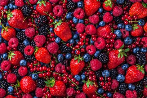 fruit or berry summer fruits don t let them pass you by fresh