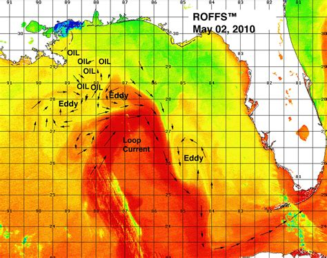 water temperature gulf of mexico the loop current