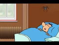 wie viele spinnen isst ein mensch im schlaf wie viele spinnen isst ein mensch im schlaf so