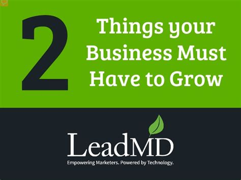 things you must have 2 things your business must have to grow