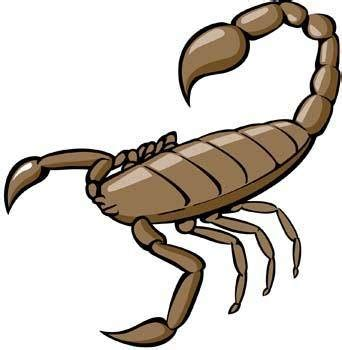 scorpion clipart scorpion free vector 4vector