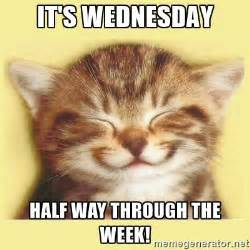Happy Wednesday Meme - it s wednesday half way through the week very happy cat
