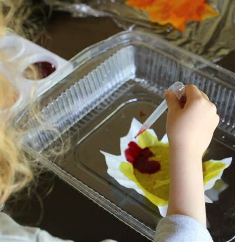 Herbstdeko Fenster Basteln Kindern by Herbstdeko Basteln Mit Kindern 42 Ganz Einfache Und
