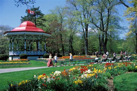 bed bugs halifax 5 great places to picnic in halifax presented by boiron canada