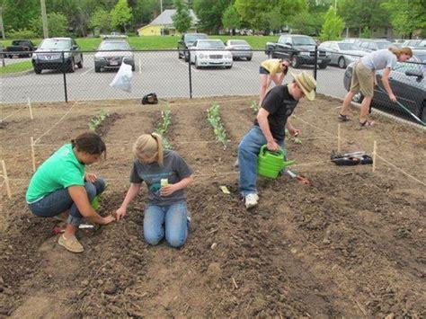semina giardino semina fare giardinaggio la semina giardino