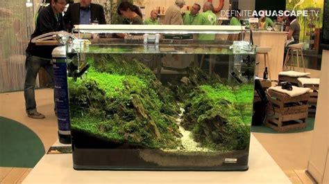 Shrimp Tank Aquascape Aquarium Ideas From Interzoo 2014 Pt 33 Dennerle Youtube