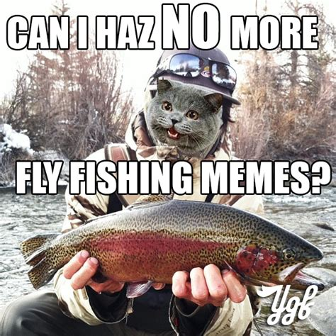Fly Fishing Meme - fly fishing meme 28 images 1897 best images about gone