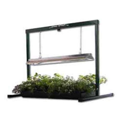 Bonsai Grow Light by Bonsai Tree Grow Light System 24 Inch From