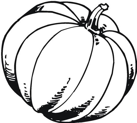 large pumpkin coloring pages fall pumpkin coloring pages bestofcoloring com