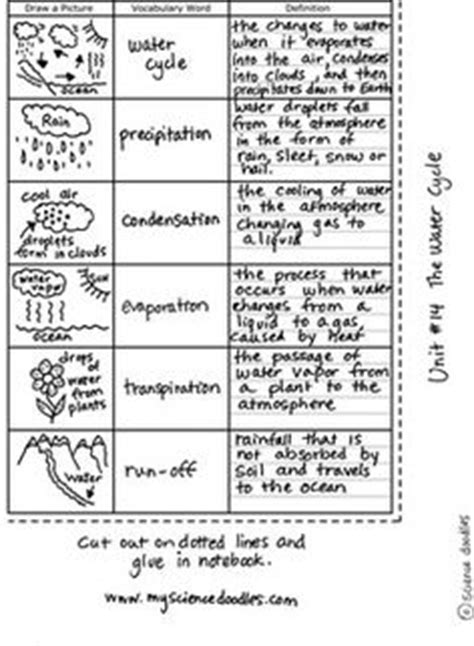 best doodle answers doodle science worksheet water cycle size answer