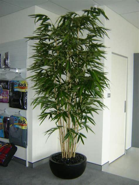 Exceptionnel Bambou Plante D Interieur #4: Bambou-artificiel-plante-artificielle-plantes-artificielles-pas-cher-pot-deco.jpg