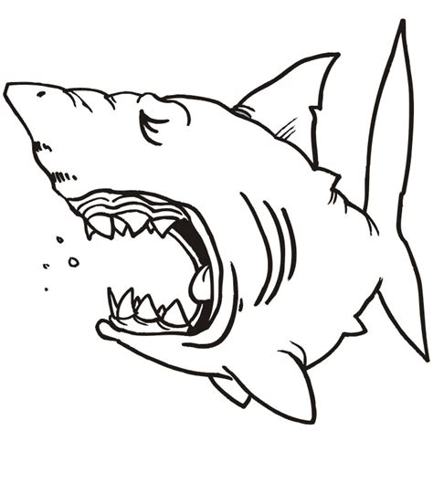coloring pages of fish and sharks 65 sea creature templates printable crafts colouring