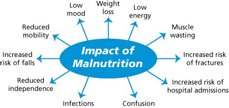 protein youth report malnutrition rising global nutrition report