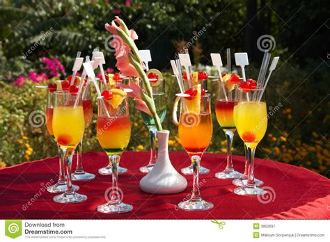 cocktail party photography outdoor cocktail party royalty free stock photography