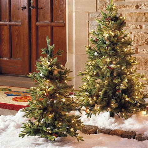 set of two 3 hyde park pathway outdoor christmas trees frontgate christmas de traditional