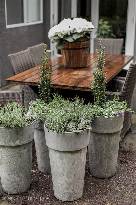 Best Planters by The Best Tip For Filling Large Outdoor Planters So Much