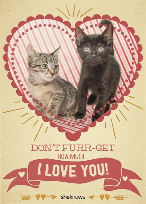 cat valentines card 12 cat s day cards that will make you aww