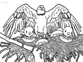 bald eagle color sheet free coloring pages of bald eagle printable