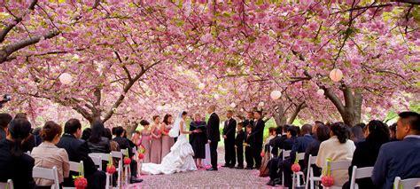 garden wedding venues new york 5 scenic wedding venues in nyc urbanmatter