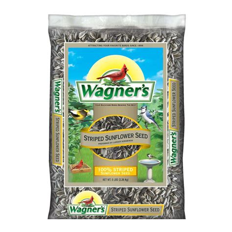 100 lb food wagner s 5 lb 100 striped sunflower seed bird food 62028 the home depot