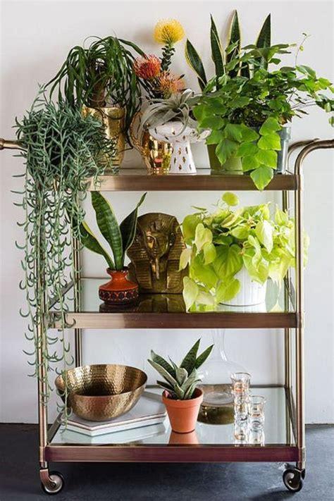 decorar rincon con plantas rinc 243 n para las plantas ana pla interiorismo y decoraci 243 n