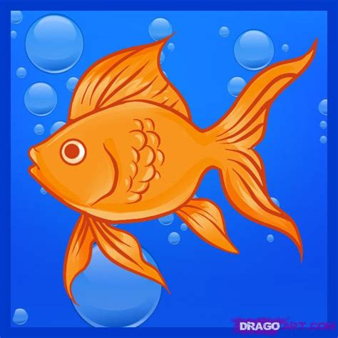 koi pond thediabeticspoon drawing realistic and stylish how to draw a goldfish step by step fish animals free