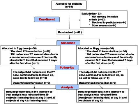 The Consort Flowchart Of Ev71vac Phase 1 Clinical Trial The Detail Of Download Scientific Clinical Trial Flow Chart Template