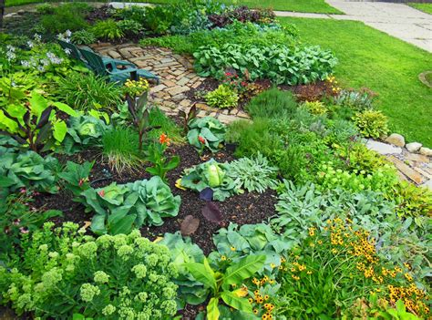 build your own small vegetable garden front yard