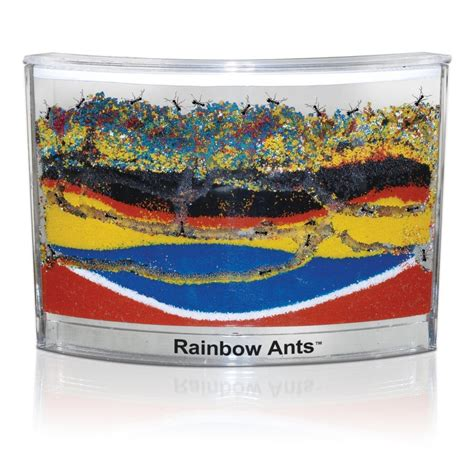 best ant farm best ant farms with live ants best ant habitats ranked