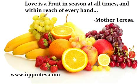 fruit quotes fruit quotes fruit quotations fruit quotes for you