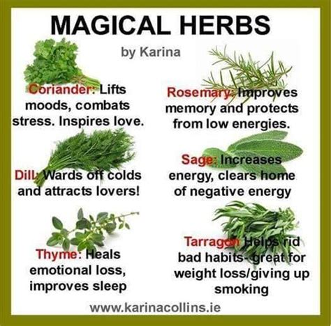 Kitchen Magic Herbs 25 Best Ideas About Healing Spells On Wicca