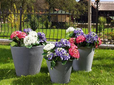 vasi di fiori in giardino giardino fai da te idee decorative per un angolo di casa