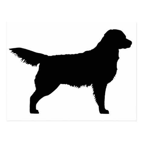 golden retriever clip golden retriever silhouette clip 30