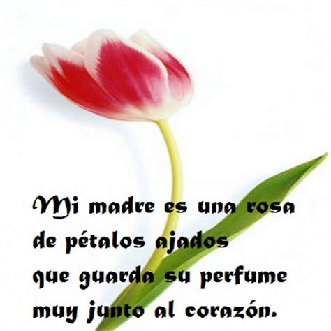 versos para mama versos por amor versos para una mama con mucho amor poemas para las madres