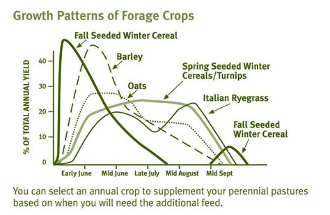 simple pattern development and production annual crops an excellent way to increase your feeding