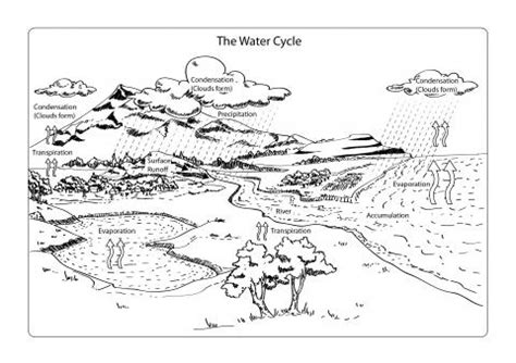 white waters and black ebook water cycle diagram in black and white gallery how to