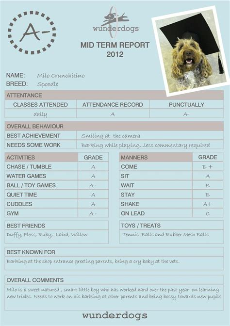 dog obedience report cards google search report card