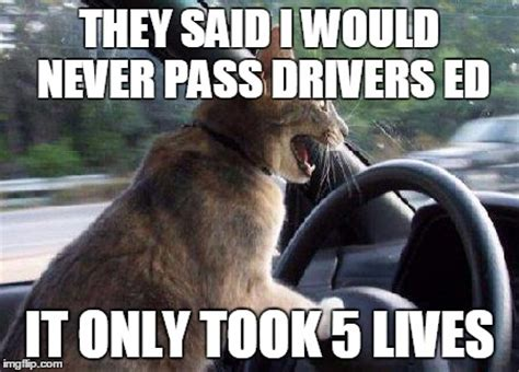 Bad Driver Memes - never give up imgflip