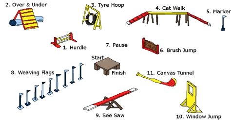 agility course how to draw agility