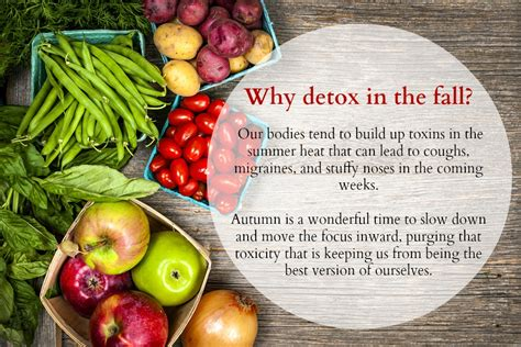 Why Detox Food by Juicing Archives Lifestyle In Shavasana
