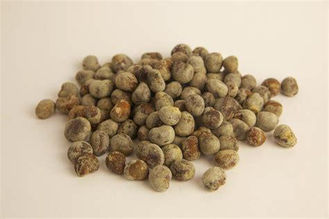 baobab fruit baobab seed is sourcing the seeds ackroyd harvey conflicted seeds