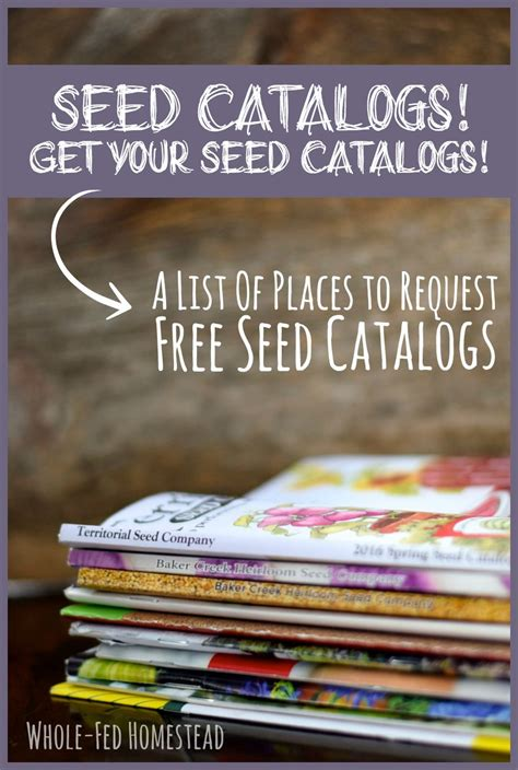 Gardening Catalogs Seed Companies by Seed Catalogs Get Your Seed Catalogs A List Of Places To