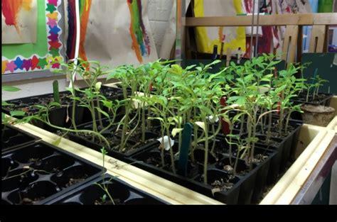 Winter Gardens Elementary School by Uk Clik Program Helps Expand Winter Gardens In Appalachian