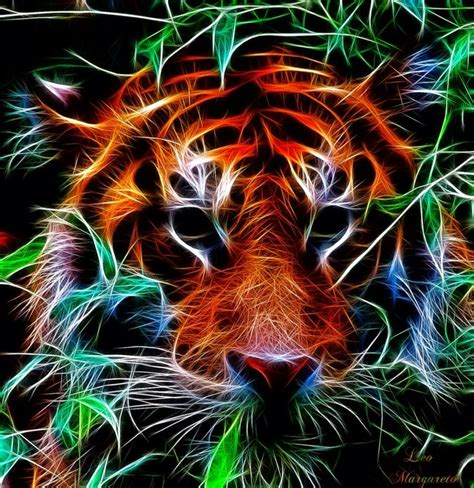 Kaos 3d Tiger Neon 203 best images about fractals and computer on neon wolves and