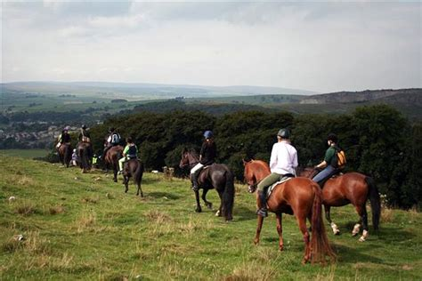 the best places to go horse riding near edinburgh the list