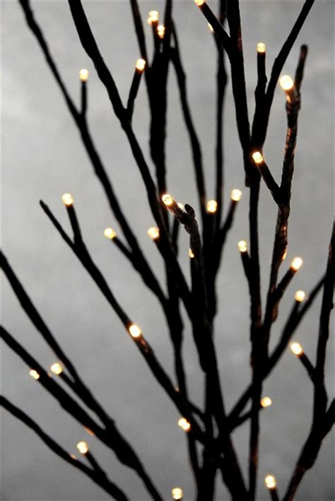 Y Branch Rucika D 4 lighted branches lights candelabros de madera candelabros y velas