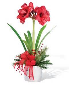Vase Clearance Amaryllis Silk Flower Arrangement For Christmas Amp Holiday