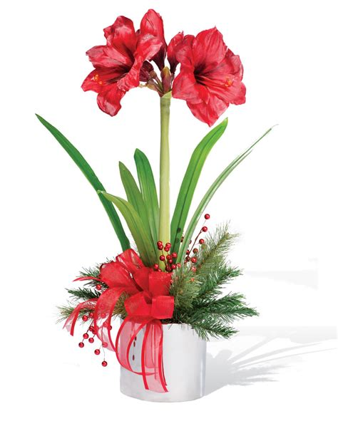 amaryllis silk flower arrangement for christmas holiday